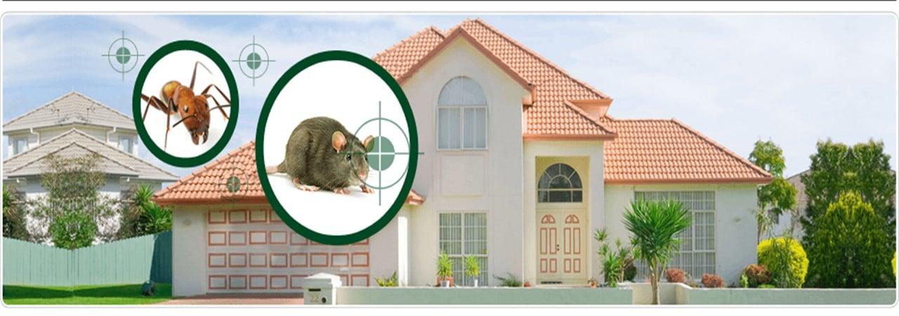 böcek ilaçlama bakanlık onaylı